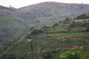 Ooty picture 9