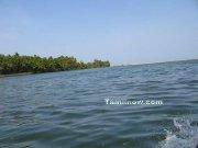 Sea view from chunnambar lake