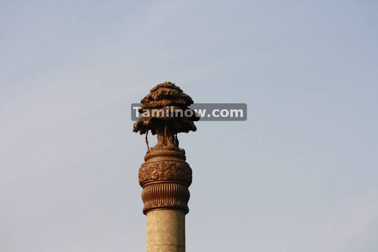 Pillars at rajiv gandhi memorial 3