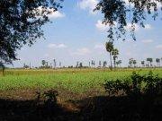 Tamil Nadu Photos