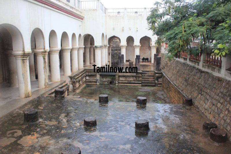 Thanjavur maratha palace photo 11 370