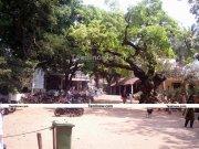 Ramana maharshi ashram 1
