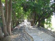 Walk way vedanthangal