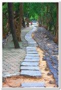 Walkway vedanthangal bird sanctuary