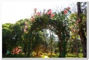 State horticultural farm yercaud 1
