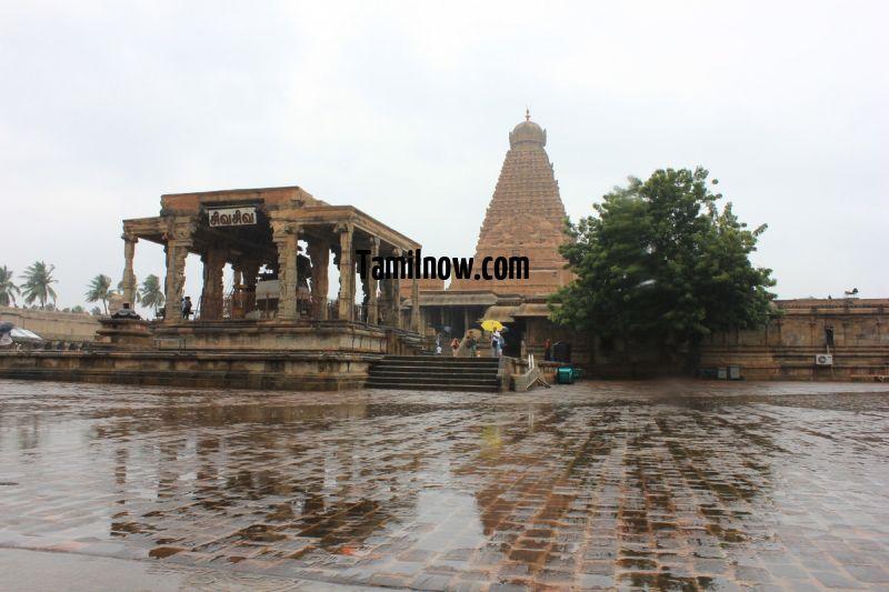 Big temple of thanjavur vimanam and nandi 637