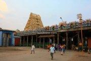 Ekambaranatha temple kanchipuram 2