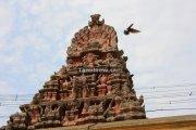 Kamatchi amman temple kanchipuram 2