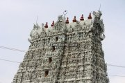 Suchindram temple gopuram photos 1