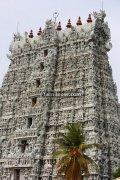 Suchindram temple gopuram photos 2