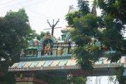 Suchindram temple photos 1