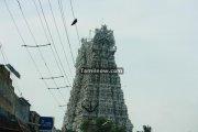 Suchindram temple photos 5