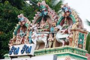 Suchindram thanumalayan temple photos 3