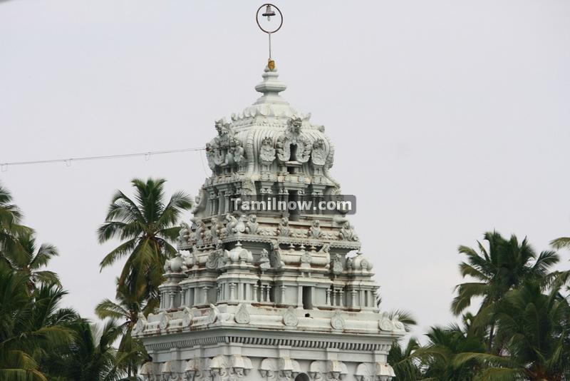 Suchindram thanumalayan temple photos 5