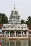 Suchindram thanumalayan temple photos 6