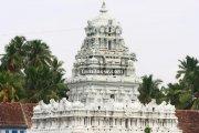 Suchindram thanumalayan temple photos 7