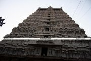 Thiruvannamalai temple rajagopuram 5