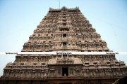 Tiruvannamalai temple photo 8