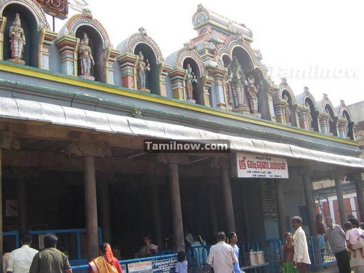 Thiruvatriyur temple photos 11
