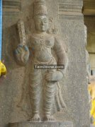 Thiruvatriyur temple photos 6