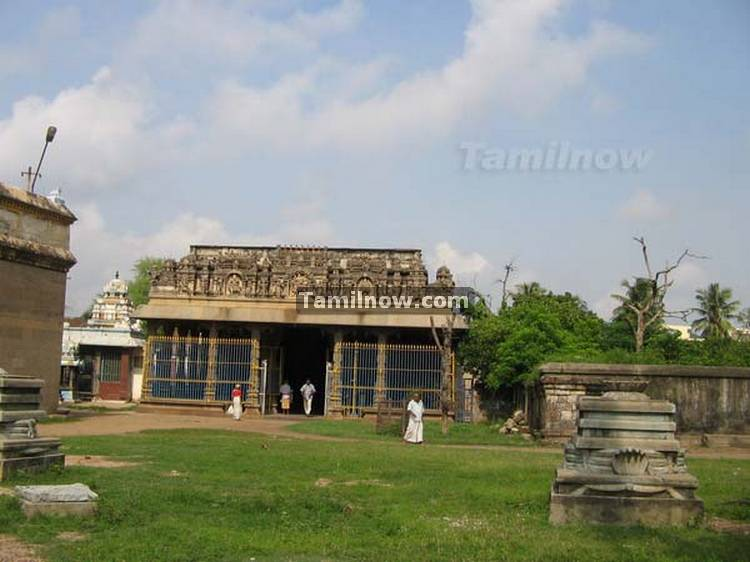 Thiruvatriyur temple photos 9