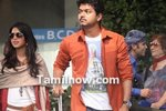 Thalaivaa: A political thriller from Vijay