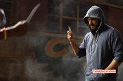 Ajith Actor 2015 Photos 4031