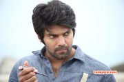 Tamil Star Arya Latest Picture 354