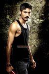 Actor Dhanush 6964