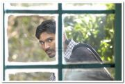 Dhanush Photos 11