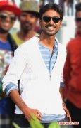 Tamil Actor Dhanush 4337