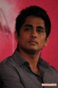Actor Siddharth 4660