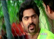 Tamil Actor Silambarasan