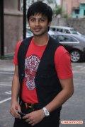 Actor Srikanth 7349
