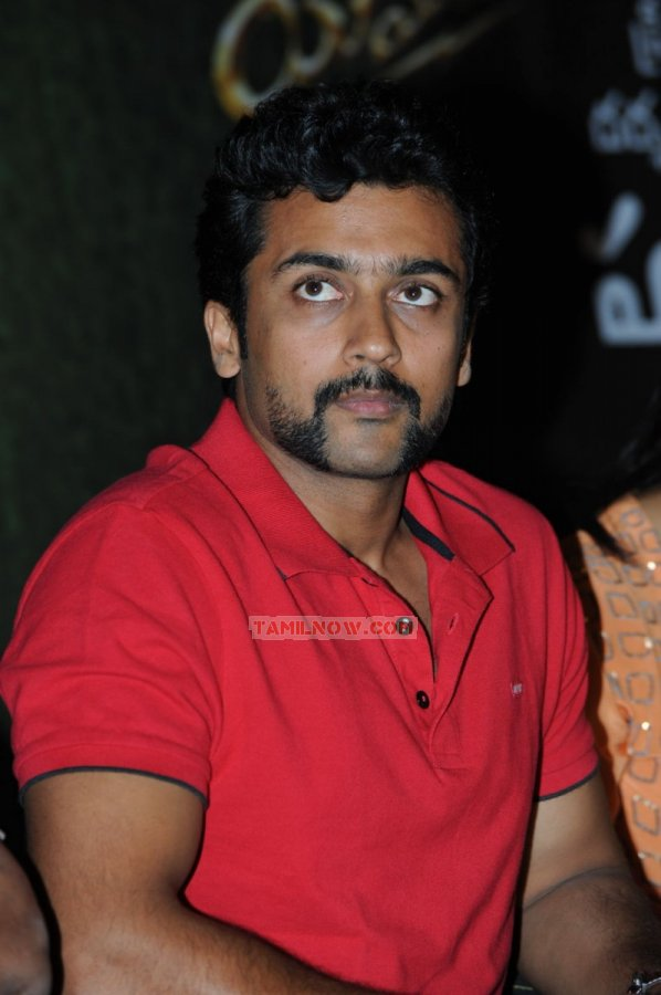 Actor Surya Photos 3503