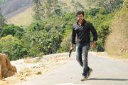 Tamil Actor Surya 5953