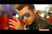 Tamil Hero Surya Recent Album 395