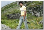 Actor Vijay 1