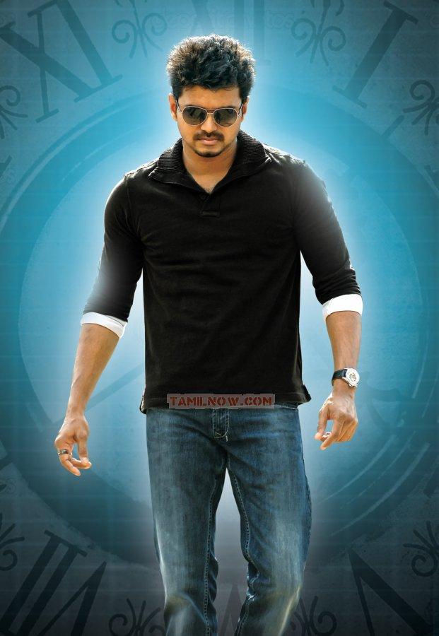 Actor Vijay 8263
