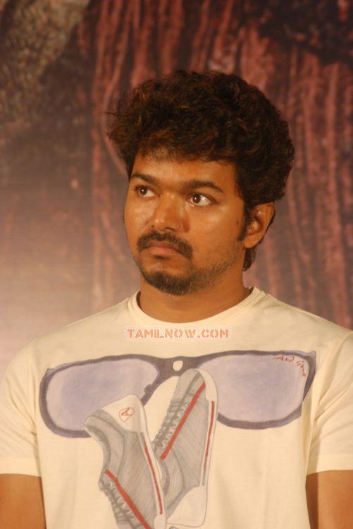 Actor Vijay 8955