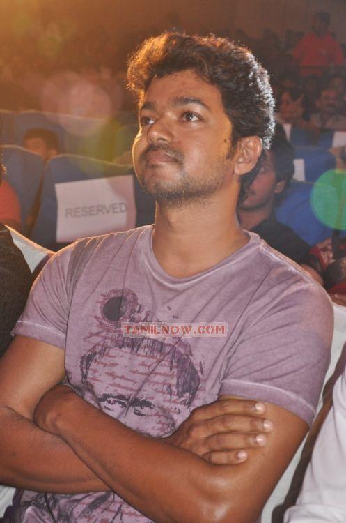 Actor Vijay Image 242
