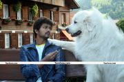 Actor Vijay Photos 03