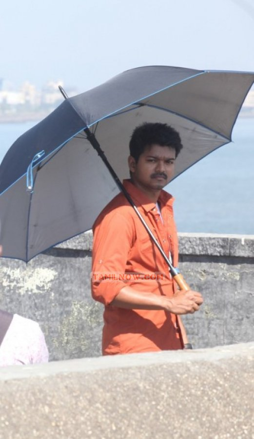 Actor Vijay Photos 8698