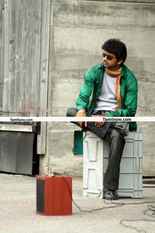Actor Vijay Stills 011