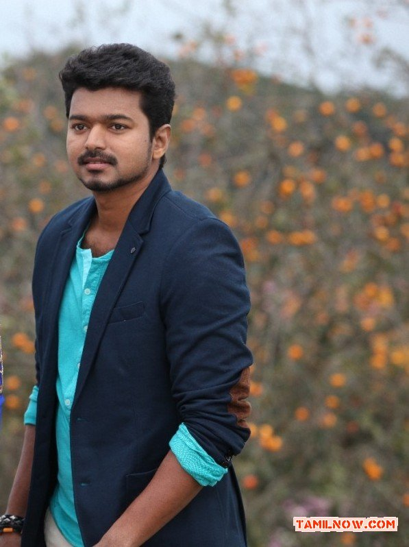 Tamil Actor Vijay Photos 586