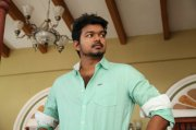 Vijay Hero Recent Photos 6555