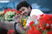 Vijay Photo 1