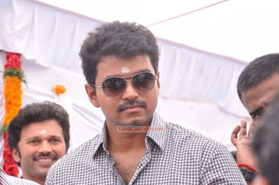 Vijay Stills 485