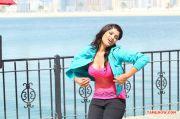 Actress Aakansha Puri 8615