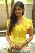 Aashritha South Actress Jul 2015 Image 7017